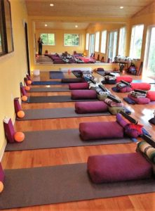 Cowichan Bay yoga therapy